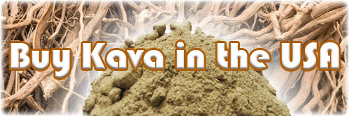 Buy Kava in the USA