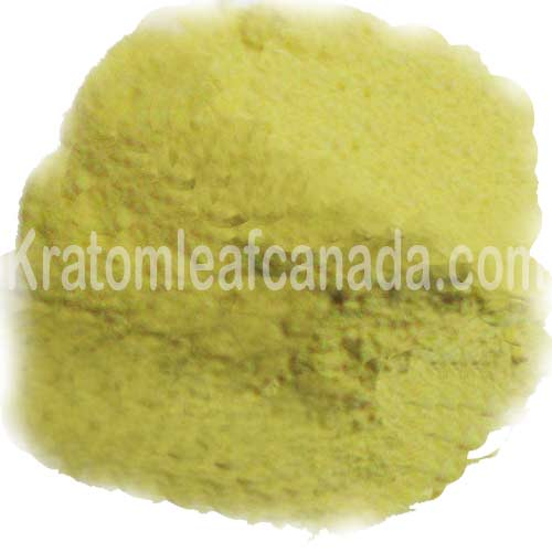 Kanna Extract in Canada, buy Kanna 20x extract USA